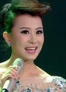 安徽卫视2014春晚