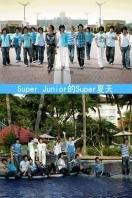 Super Junior的Super夏天 2007