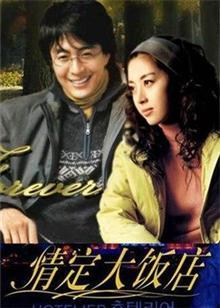 情定大饭店DVD版