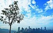 丰台区环保局:10月底前全区实现无煤化