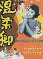 温柔乡DVD