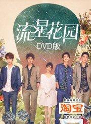 流星花园 DVD版