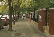 家门口修路增绿建公园