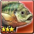 蓝鳃鱼.png