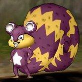 星星旅鼠.jpg