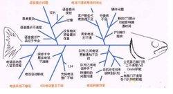 外文名称 fishbone analysis 目录 展开 概述 编辑本段 鱼骨分析法是图片