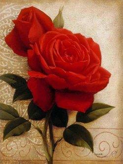 玫瑰人生 简谱双手