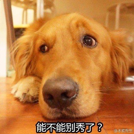 单身狗2.jpg