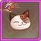 小猫饼干.png