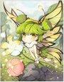彩蝶精灵卡片