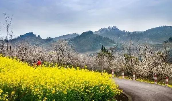 让我们一起回归大自然:四川崇州一日游