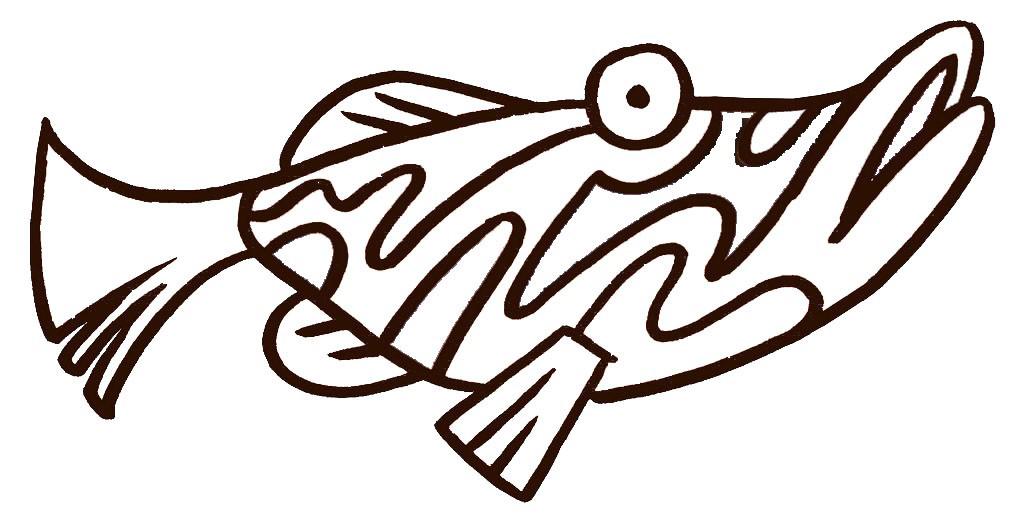 可爱的热带鱼金鱼简笔画