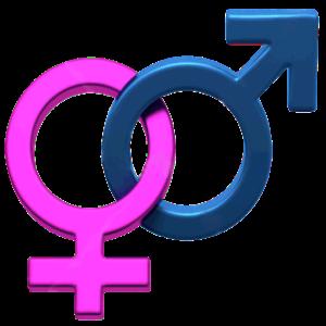 ZB Baby Gender Predictor