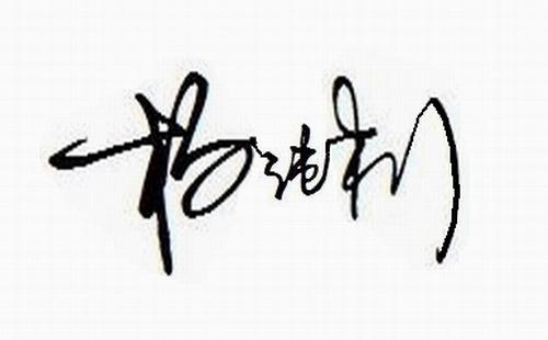 艺术签名设计一笔签杨纯利