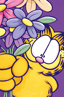 加菲猫的幸福生活第五季高清