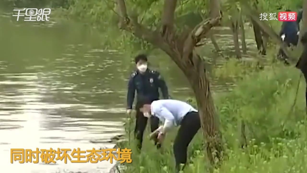 韩国母亲河伟哥超标:一半男人都嫖娼!