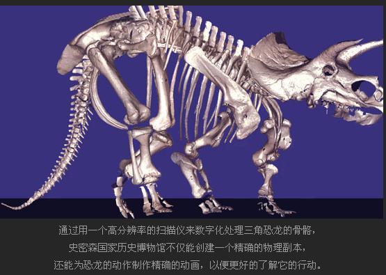 世界上第一架三角恐龙的骨骼陈列近100年后