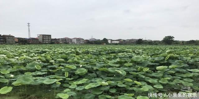 <b>江西最胆大的县,由南昌管辖,却敢挑战鹰潭,让景德镇很难堪</b>