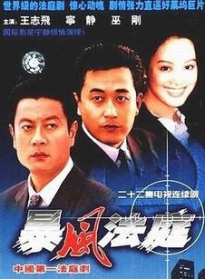 暴风法庭(共23集)