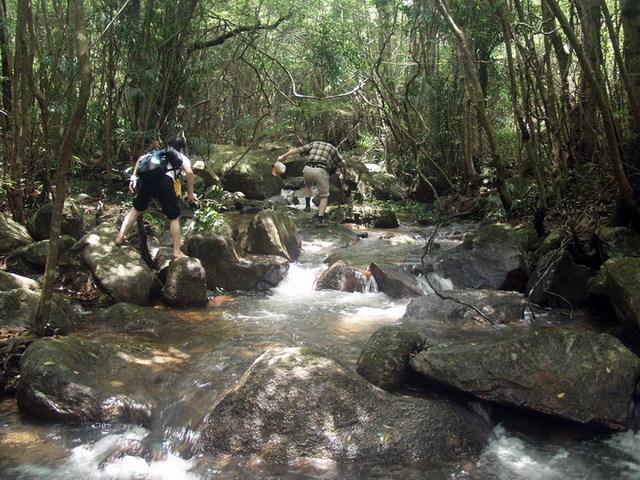 黑石顶,鼎湖山和南昆山自然保护区并称为北回归线上