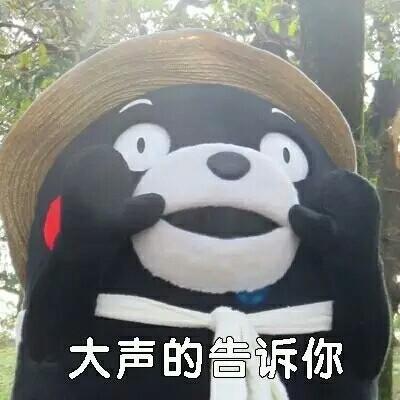 熊本熊污王表情包8.jpg