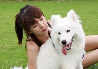 漂亮姐姐抱萨摩耶狗狗的头像