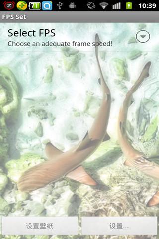 鲨鱼宝宝动态壁纸(来自:)