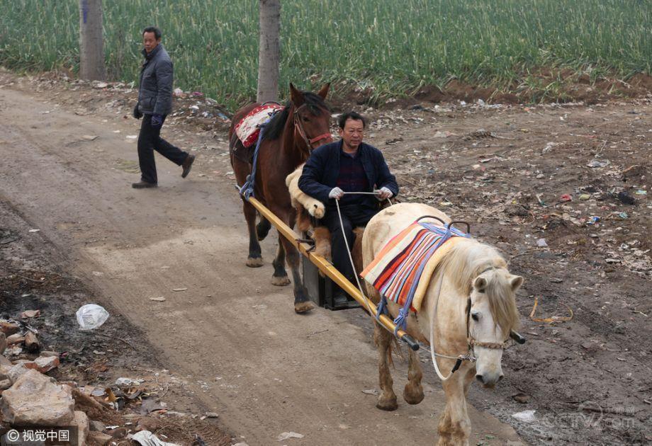 太会玩!河南老汉用俩马抬轿 路人欲摆拍吓哭娃 - 周公乐 - xinhua8848 的博客