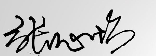 签名设计免费版,一笔签,明星签 花体签,艺术签,公文签名字:张心怡