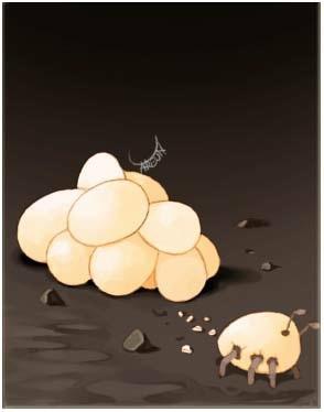 蚂蚁卵卡片