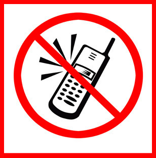 为了保证飞机的飞行安全,各国航空公司都禁止在飞机上使用移动电话.