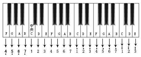 放在五线谱开头的符号(谱号)分别为高音谱号(像一把雨伞)和低音谱号