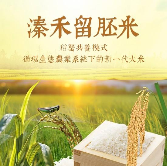溱禾大米—一款来自全国文明镇的大米