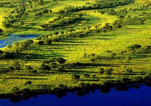 黑龙江三江自然保护区