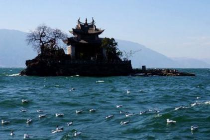 秦始皇仙药找到了:徐福不敢回国在日本自立为王 - 一统江山 - 一统江山的博客