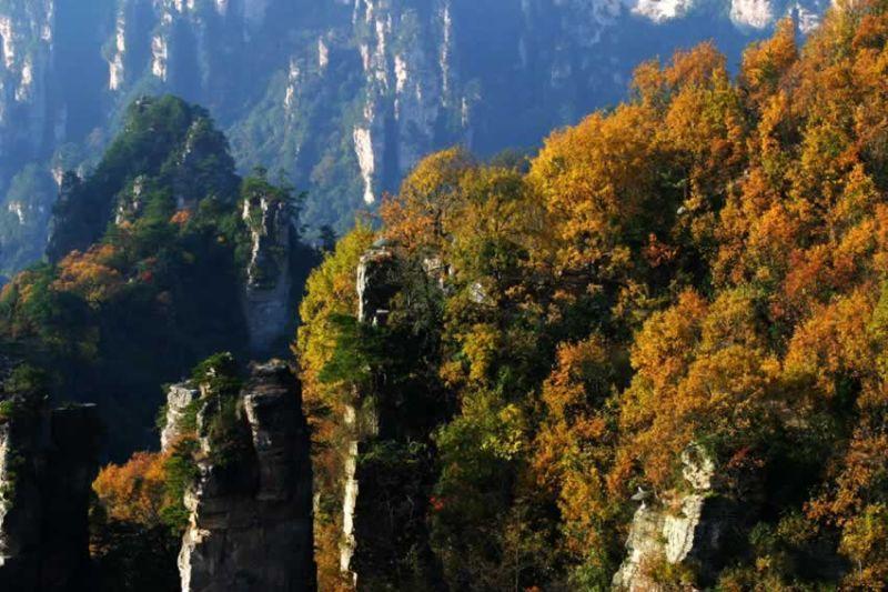 三合南里社区风景