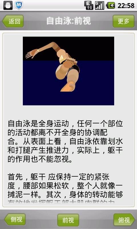 蛙泳正确姿势图解 蛙泳的正确腿姿势图解 蛙泳姿势动画图解