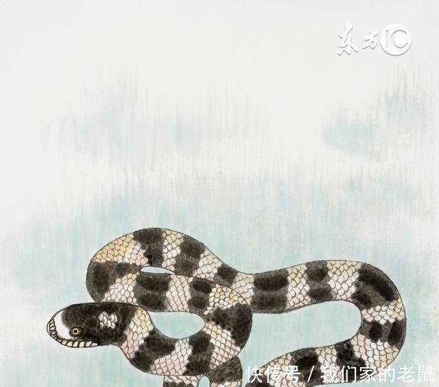 属蛇人影响一生的忠告,尤其是65
