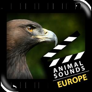 欧洲动物声音1.0安卓客户端下载