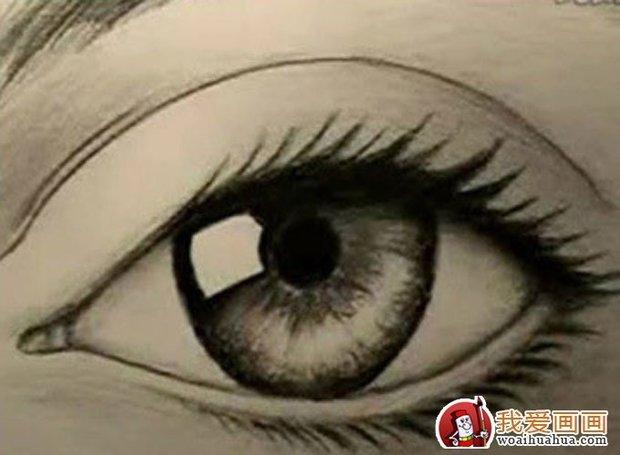 眼睛 素描/素描的眼睛画法