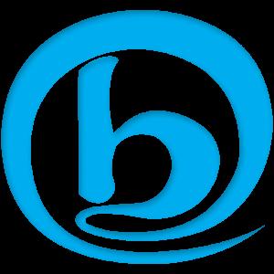 Celular da Selecionadora - BNE