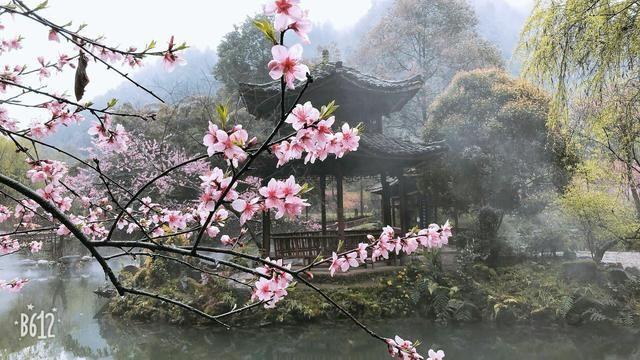 桃花源已落户重庆酉阳,贵州人为啥不生气?
