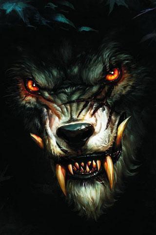 狼壁纸大全,有关狼的壁纸,孤狼啸月高清壁纸桌面,狼壁纸桌面 高清图片