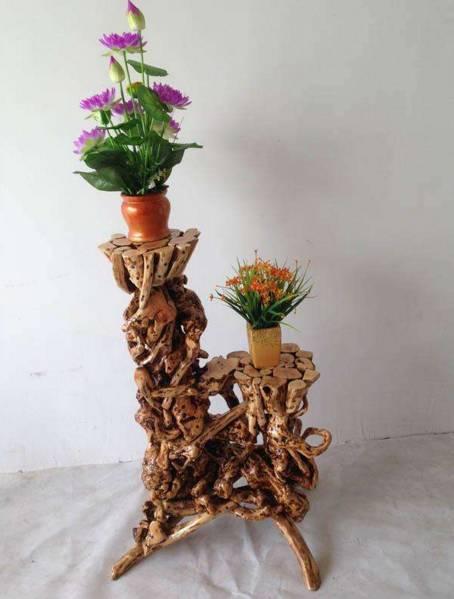 当人们发现根雕                    值的,根雕花架与绿植结合了,草木