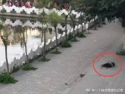 【转】北京时间      泸州通报学生死亡事件:排除他杀调查没有发现欺凌 - 妙康居士 - 妙康居士~晴樵雪读的博客