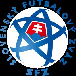 洛伐克足球队_360问答
