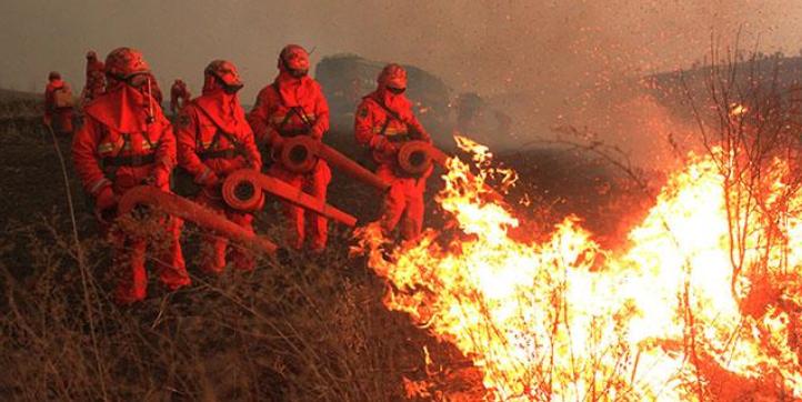 蒙古国草原大火蔓延至中国境内,中方森林消防连夜扑救!