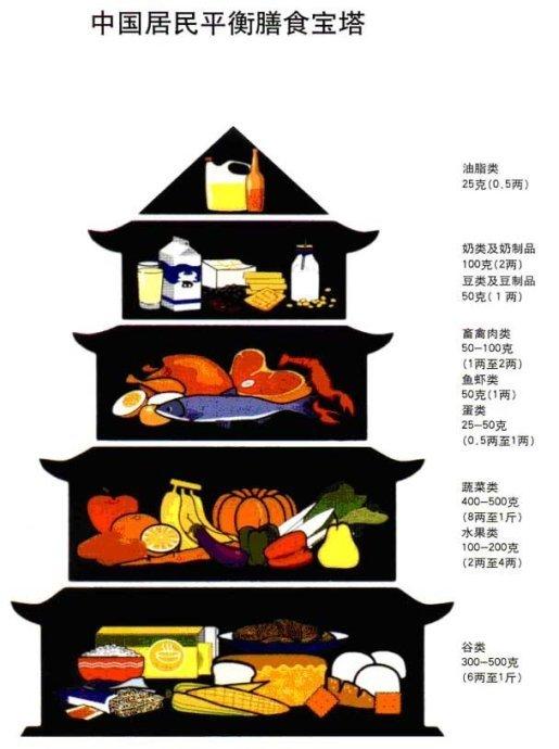 平衡膳食宝塔图片