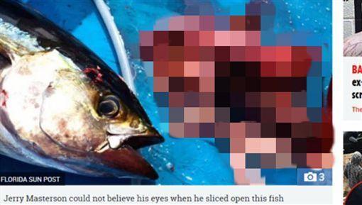 美国渔夫外海钓到一条金枪鱼,意外揭发一起谋杀案