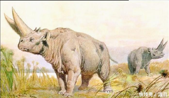 远古灭绝的动物一个比一个恐怖